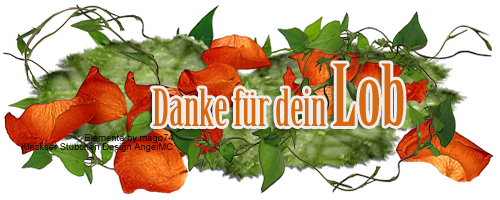 Danke-fuer-dein-Lob-018